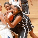 TeamPSB Event Recap:  Best of Summer Tournament Any Gym is Home Bracket July 17, 2012